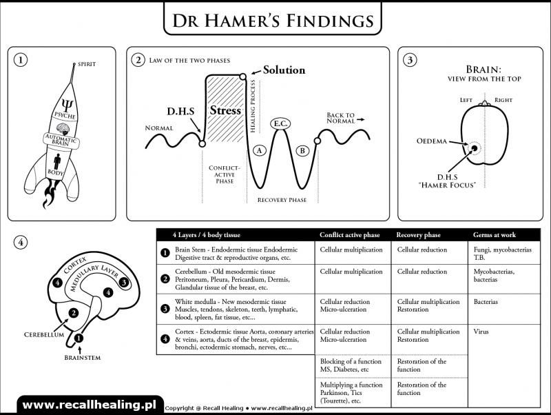 dr-hamers-findings-new