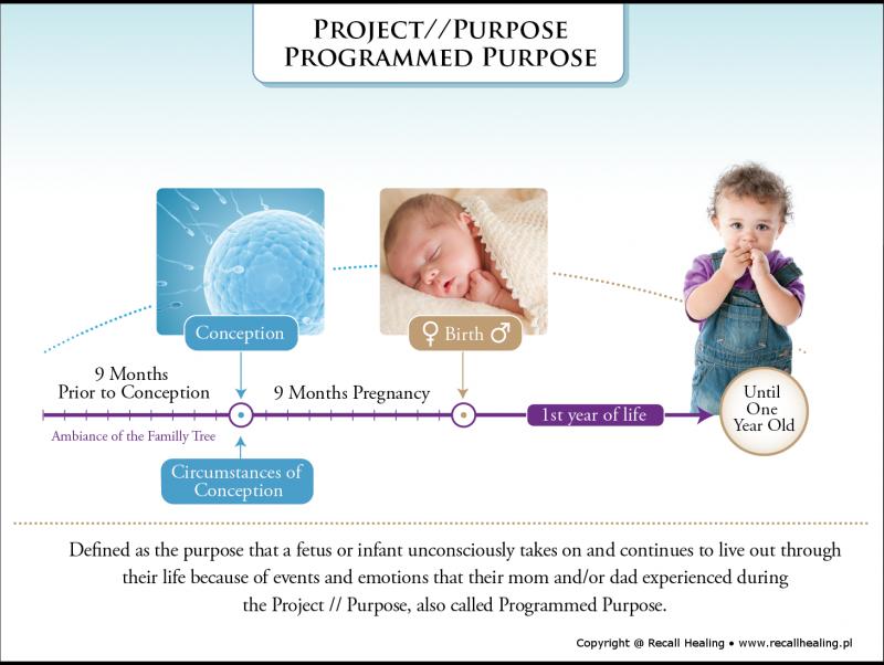 projetpurpose_color-1